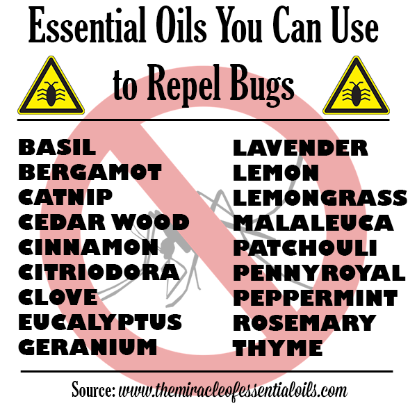 bug repellent essential oils
