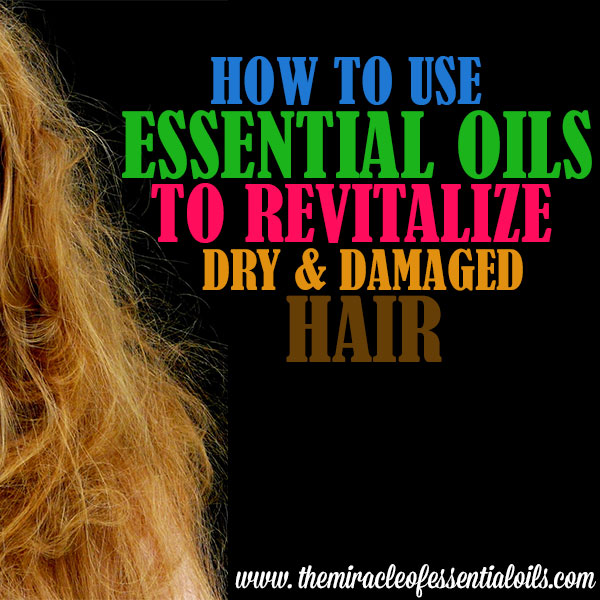 essential oils for dry damaged hair