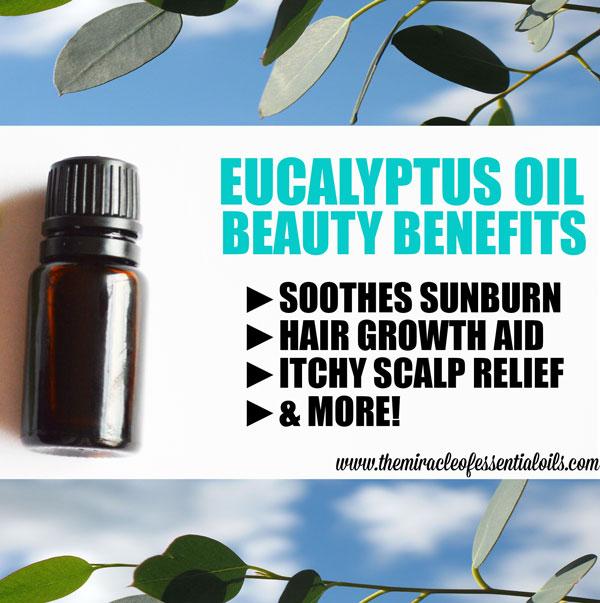 Benefits of Eucalyptus Oil for Hair, Skin & More