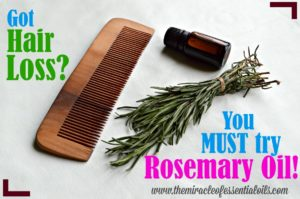 Rosemary Oil for Hair Loss | Natural Essential Oil Remedy