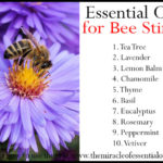 10 Fast-Acting Essential Oils for Bee Sting Relief