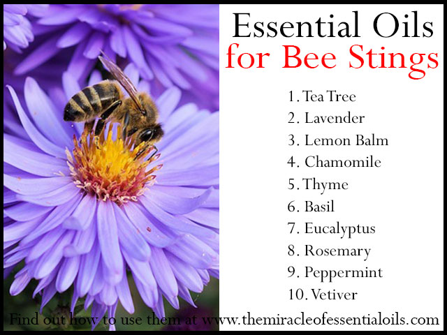 DIY Essential Oil Bee Repellent to Safely Get Rid of Bees