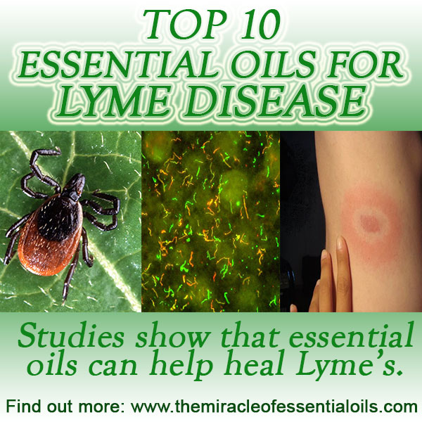 essential-oils-for-lyme-disease