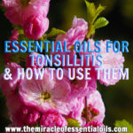 7 Best Essential Oils for Tonsillitis & How to Use