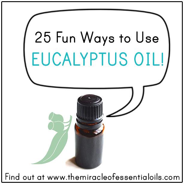 How to Use Eucalyptus Oil | 25 Fun Ways!