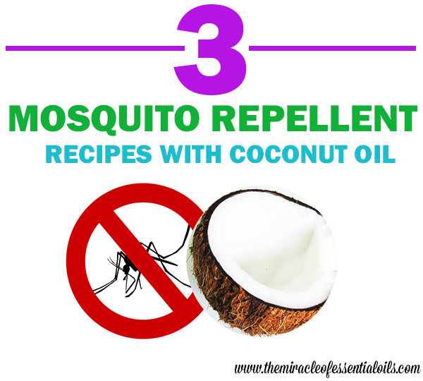 coconut oil mosquito repellent recipe