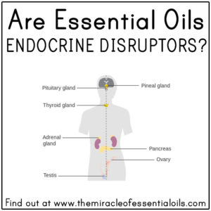 Are Essential Oils Endocrine Disruptors?