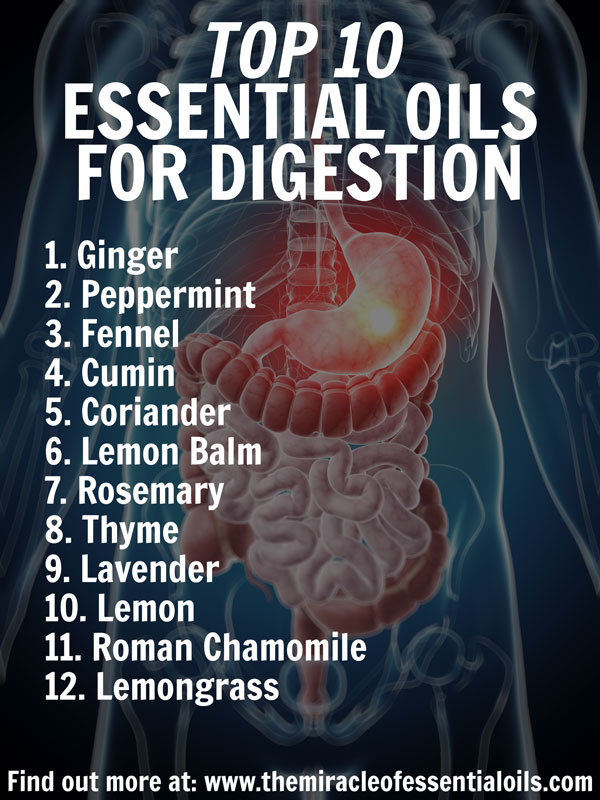 12 Essential Oils for Digestion & How to Use