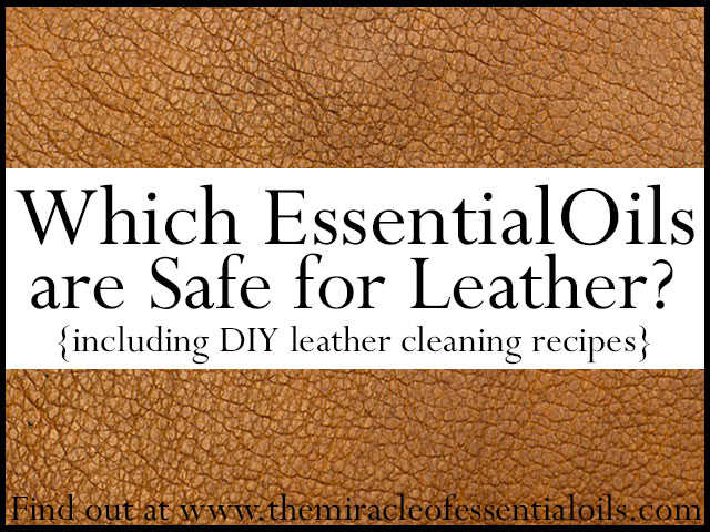 5 Essential Oils Safe for Leather