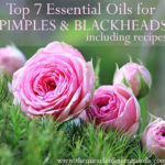 7 Essential Oils for Pimples and Blackheads & How to Use