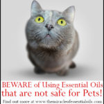 Beware of Essential Oils NOT Safe for Pets
