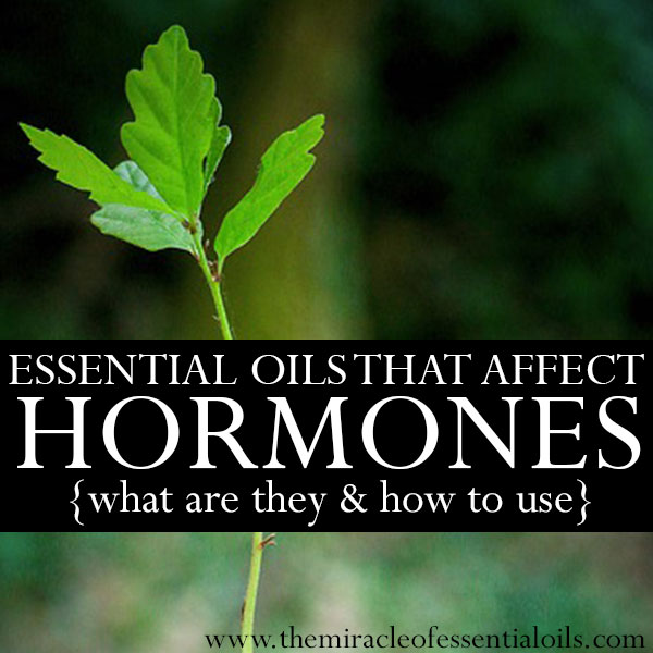 A Look at Essential Oils that Affect Hormones