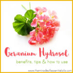 9 Geranium Hydrosol Benefits, Tips & How to Use