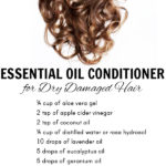 DIY Essential Oil Conditioner for Dry, Damaged Hair