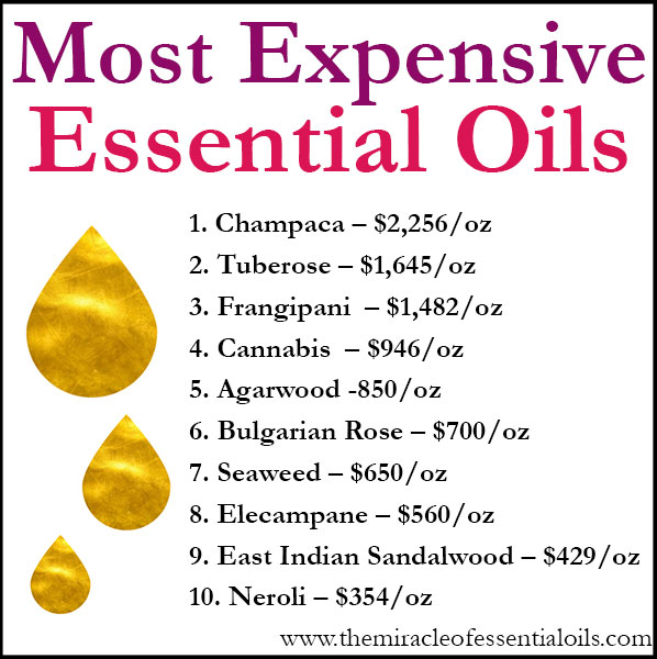 Most Expensive Essential Oils Of The World The Miracle