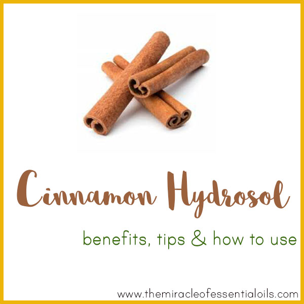 cinnamon hydrosol benefits