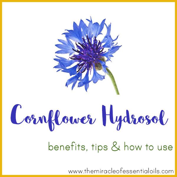 cornflower hydrosol benefits