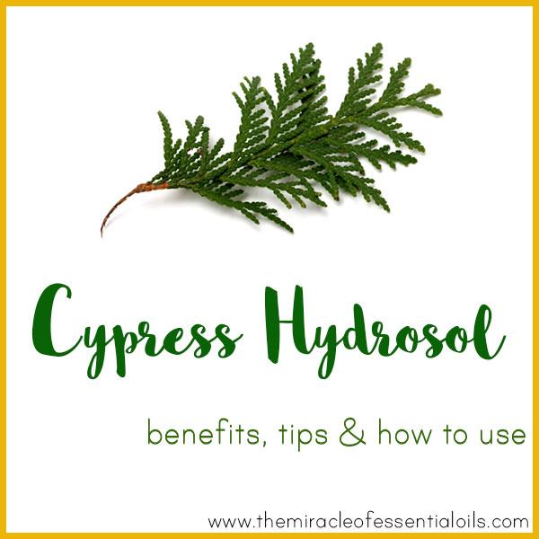 cypress hydrosol benefits