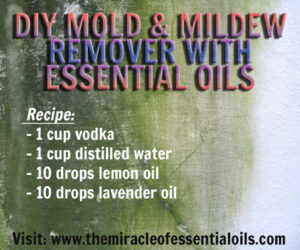 DIY Essential Oil Mildew Remover