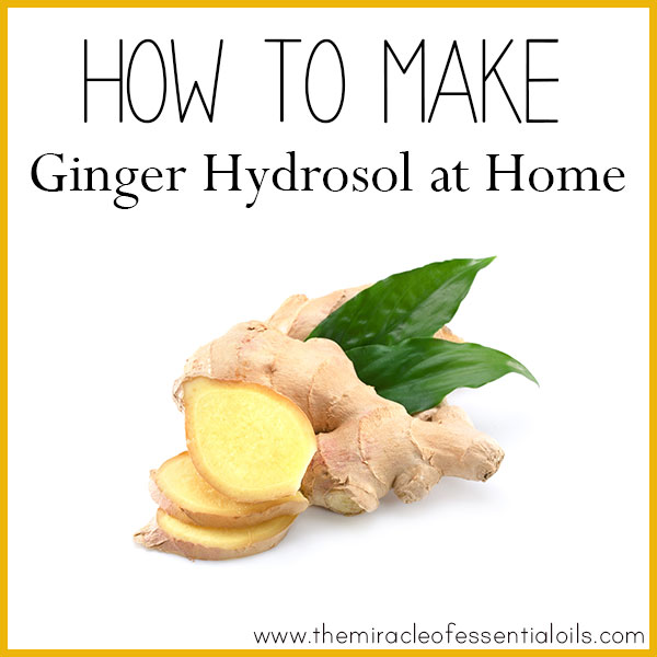 how to make ginger hydrosol at home