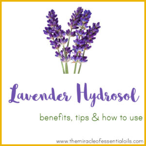 Lavender Hydrosol Benefits, Tips & How to Use