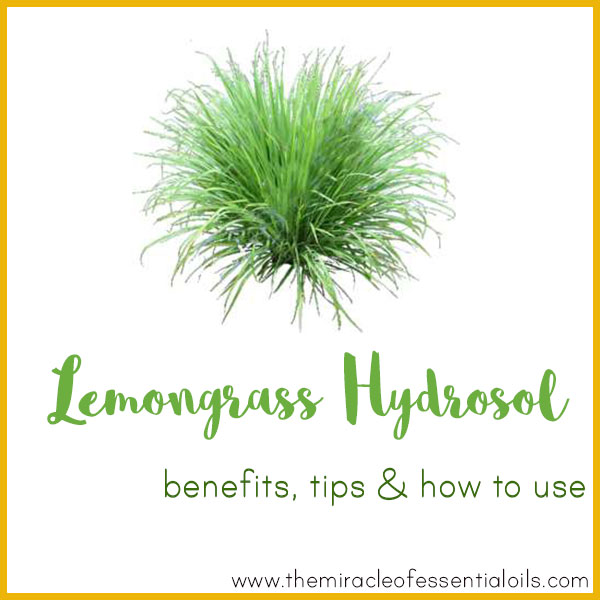 Lemongrass Hydrosol Benefits, Tips & How to Use