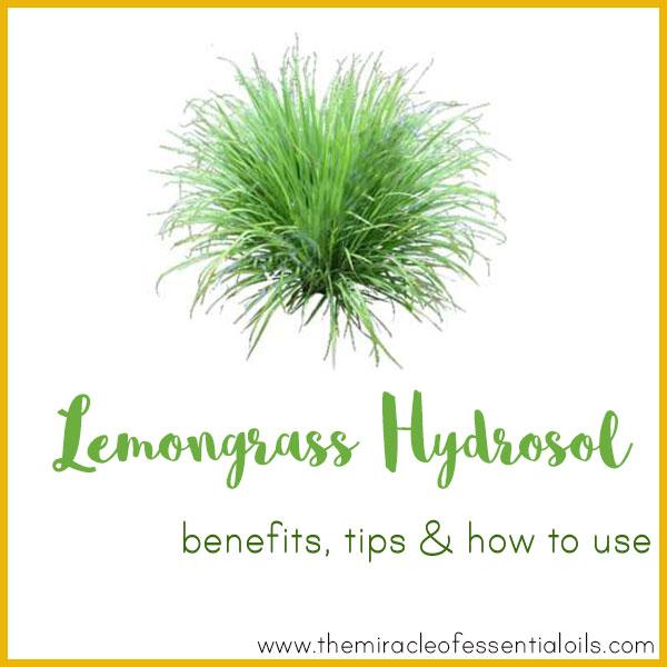 lemongrass hydrosol benefits