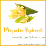 Magnolia Hydrosol Benefits, Tips & How to Use