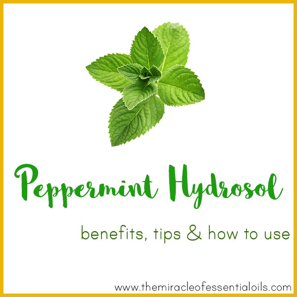 peppermint hydrosol benefits