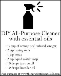 DIY Essential Oil All Purpose Cleaner