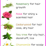 7 Essential Oils to Add to Your Shampoo for Beautiful Hair
