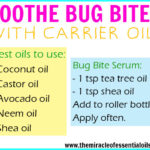 Remedies: Carrier Oils for Insect Bites