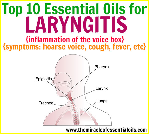 Top 10 Essential Oils For Laryngitis The Miracle Of Essential Oils