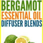 25 Brilliant Bergamot Essential Oil Diffuser Blends