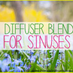 5 Essential Oil Diffuser Blends for Sinus Infection