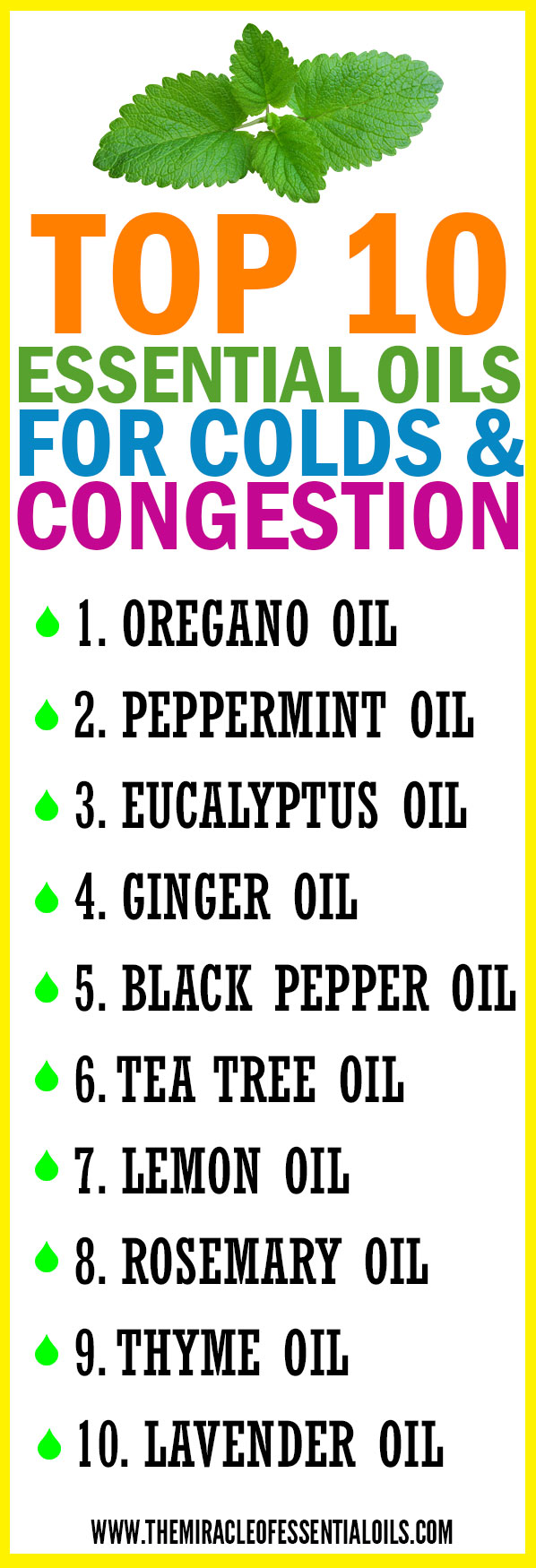 Top 10 Essential Oils for Colds and Congestion