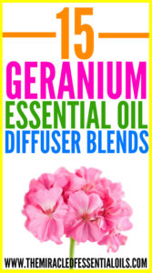15 Best Geranium Essential Oil Diffuser Blends