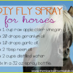 Homemade Essential Oil Fly Spray for Horses