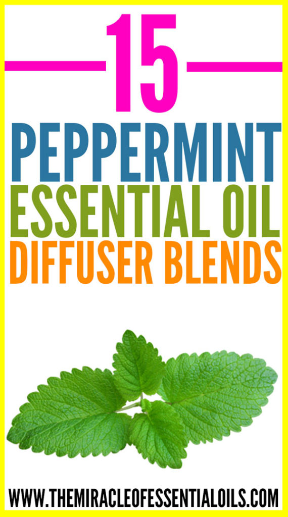 15 Best Peppermint Essential Oil Diffuser Blends The