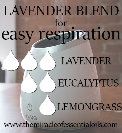 lavender blend for easy respiration