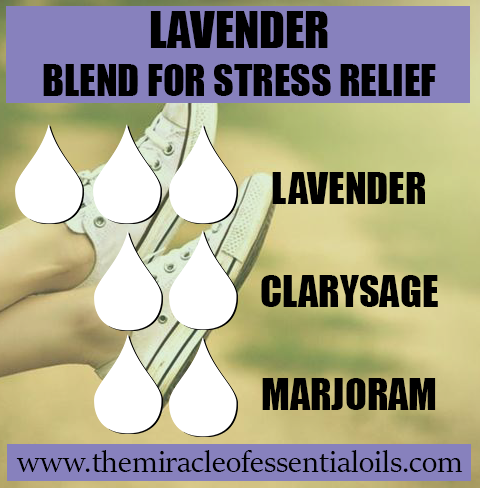 lavender blend for stress relief