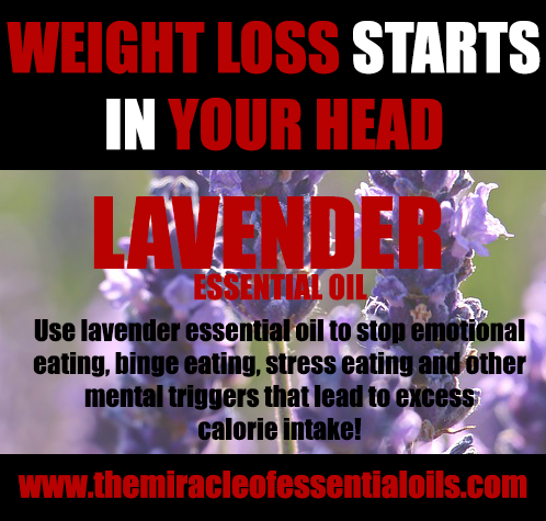 lavender essential oil for weight loss