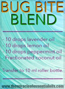 DIY Essential Oil Blend for Bug Bites | Bug Off Now!