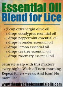 Potent Essential Oil Blend for Head Lice