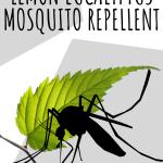 DIY Lemon Eucalyptus Mosquito Repellent Recipe