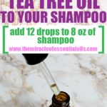 How Many Drops of Tea Tree Oil Should I Put in My Shampoo?