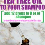 How Many Drops of Tea Tree Oil Should I Put in My Shampoo?