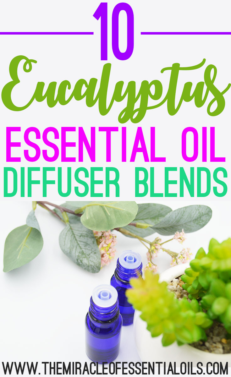 10 Eucalyptus Essential Oil Diffuser Blends